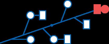 Schéma arbre d'idées